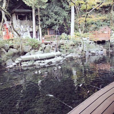 箱根温泉天成園
