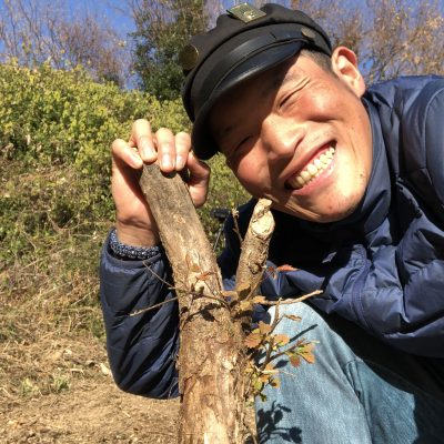 木の根を掘るジョジョ松木